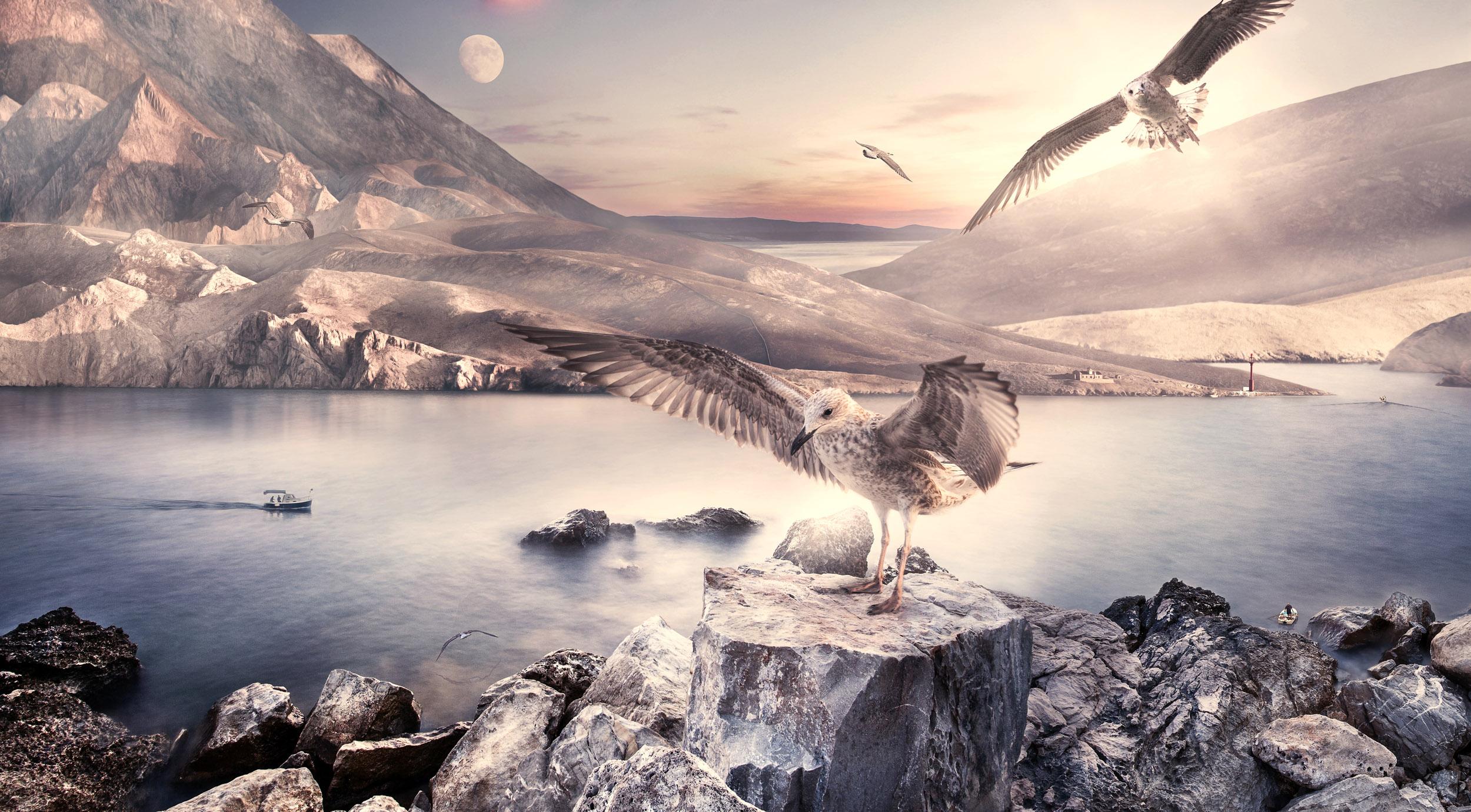 Landscape | Composing